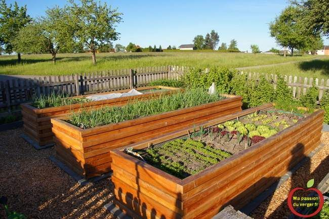 hugelkultur en bac potager familiale en bac potager en carr en permaculture plantation. Black Bedroom Furniture Sets. Home Design Ideas
