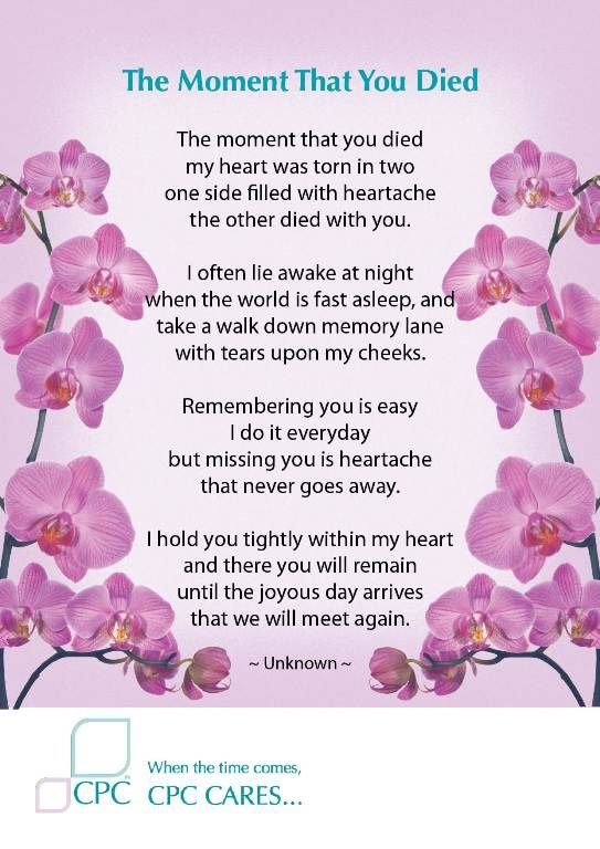 The Moment That You Died Pet Bereavement Poem Well Said Miss Amazing Quotes About Death Of A Loved One Remembered