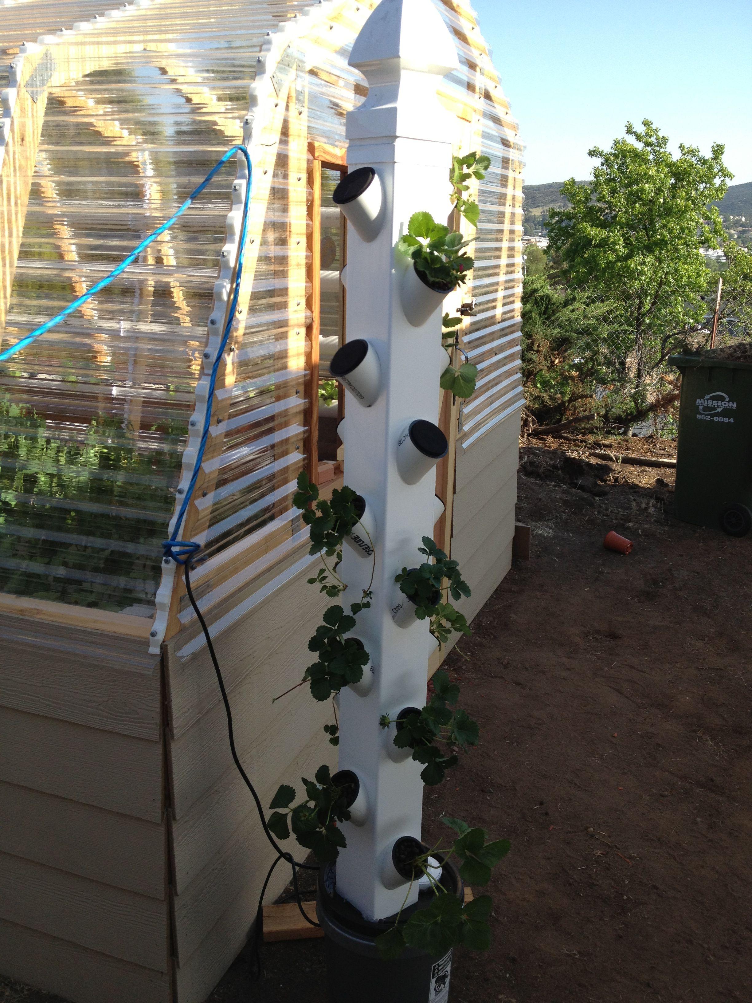 Vertical Hydroponic Garden Build