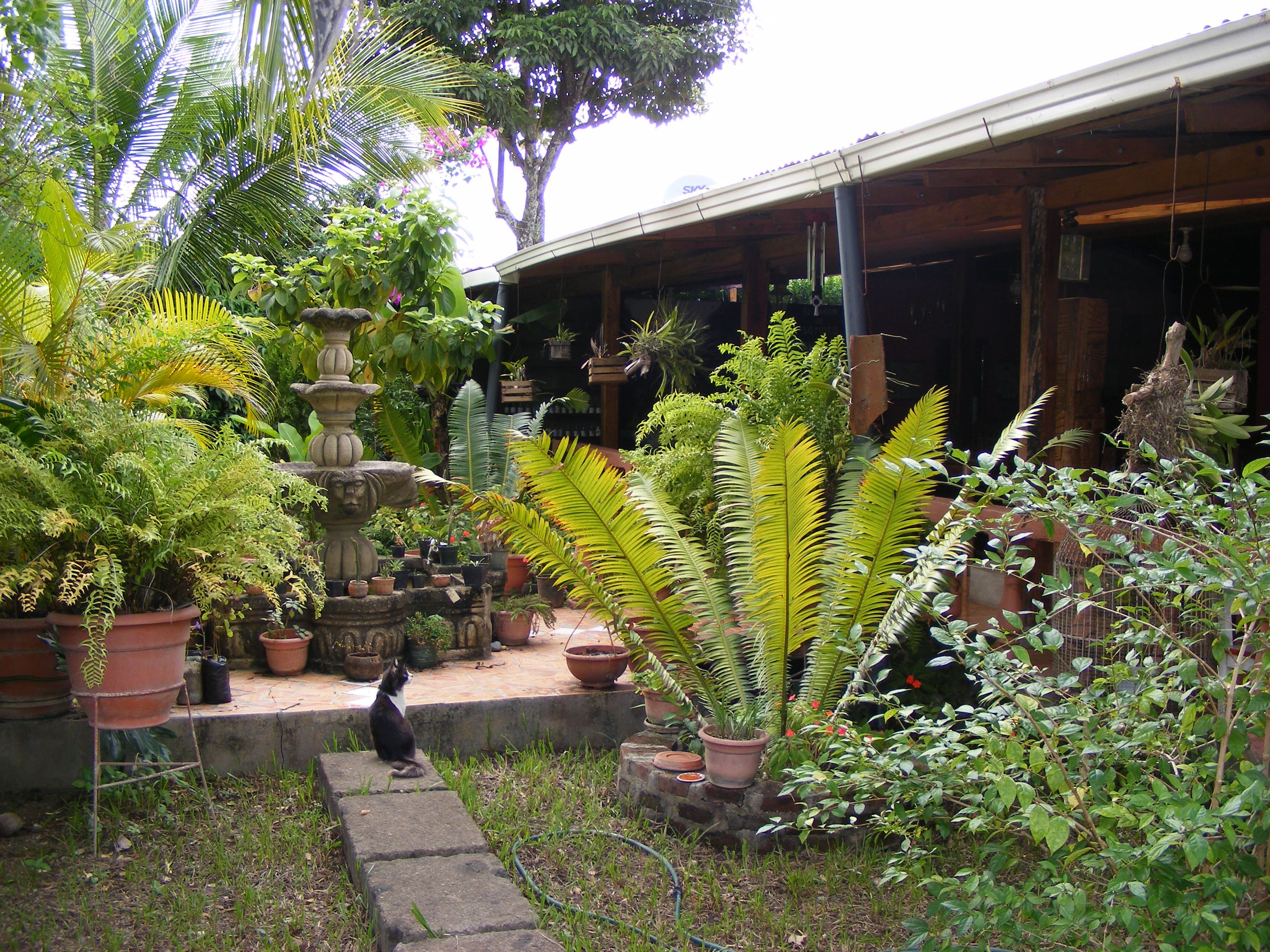 Hotel Gardens In Nicaragua Provide Guests With A Close Look