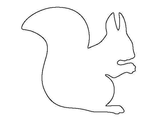 Pin By Ashton Huntley On Animals