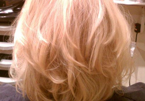 Layered Bob Hairstyles Back View