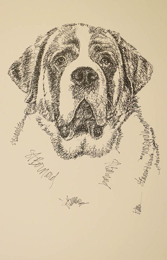 saint bernard dog art portrait drawing from words your dog s name