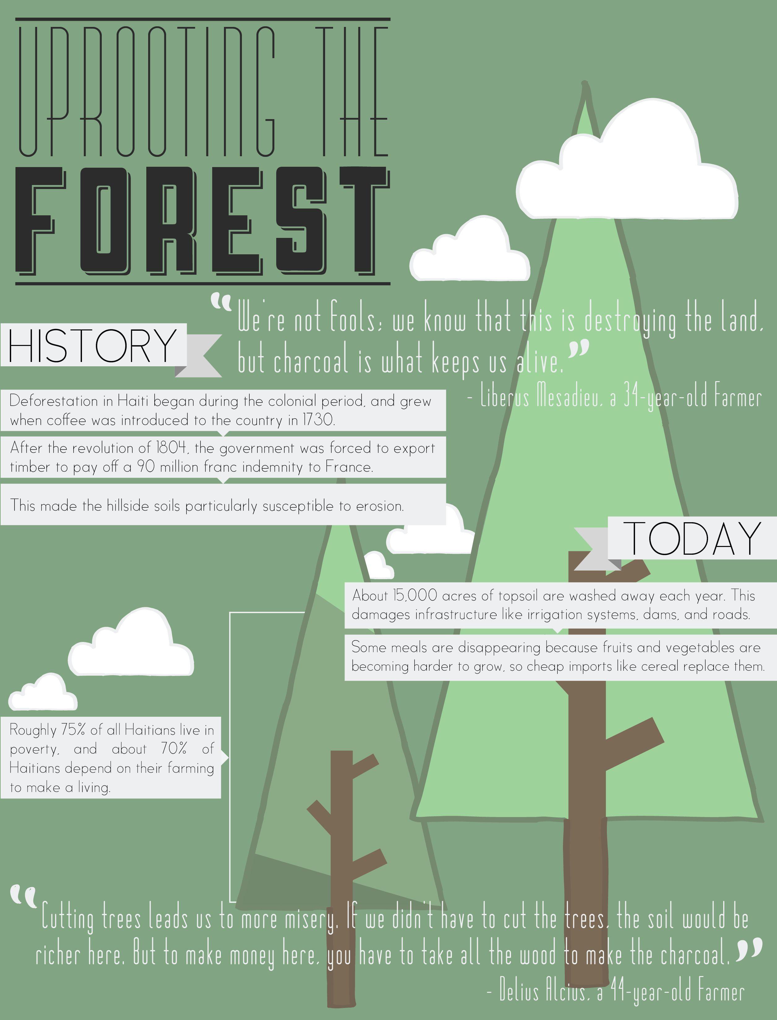 Deforestation In Haiti Infographic Seen In Life Of Haiti Magazine