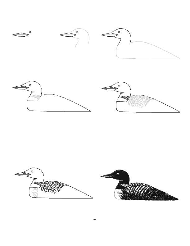 Drawing Tutorials- Good For Minute Drawings | Space To Create | Drawing | Art Education ...