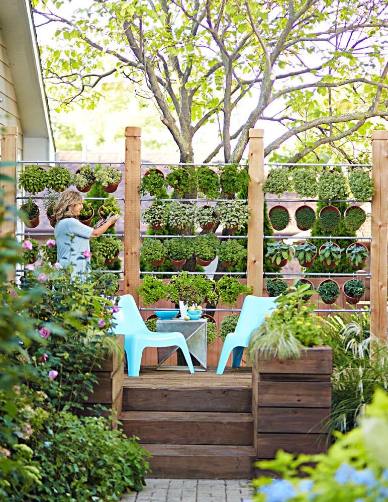 How To Build A Wall Of Potted Herbs Herb Pots Growing Herbs