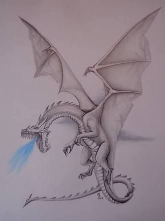 How to draw a realistic dragon contest results