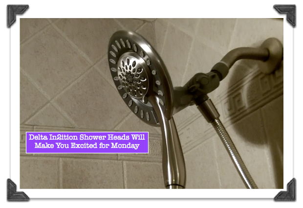 Delta In2ition Shower Heads Rock Shower Heads Home Repair Shower Faucet Repair