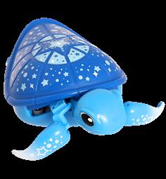 Little Live Pets Turtle S1 Blue With Images Little Live Pets
