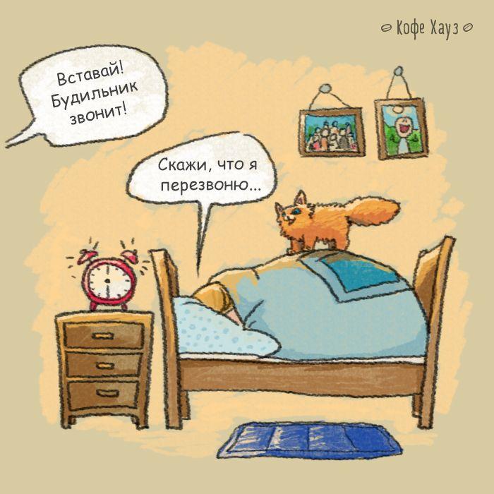 Пожелания доброго утра с приколом лечится только
