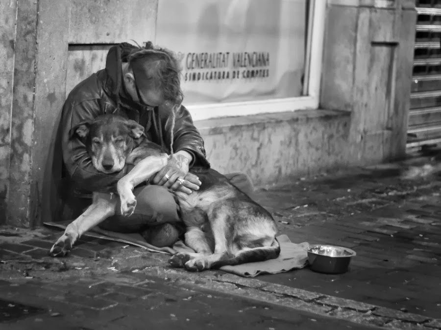 35 Heartwarming Photographs Of Homeless People With Their Dogs
