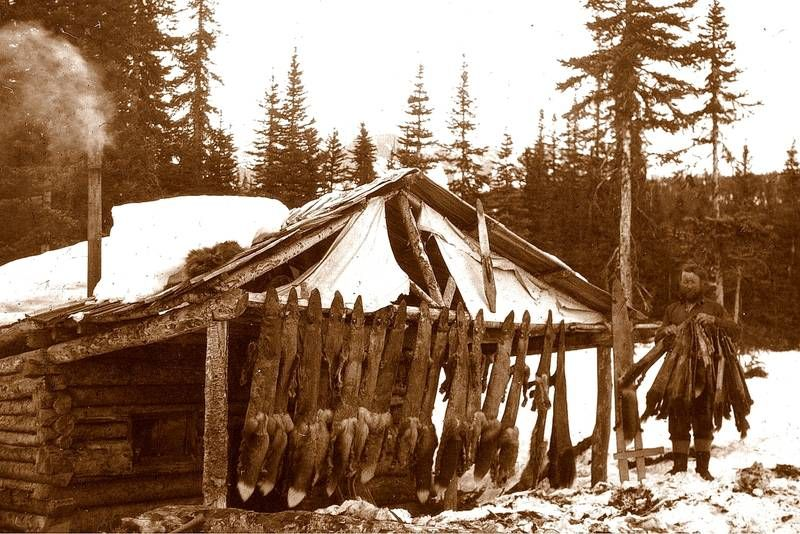 Trapper cabin in alaska tinyhouse cottage pinterest for Alaska cottage