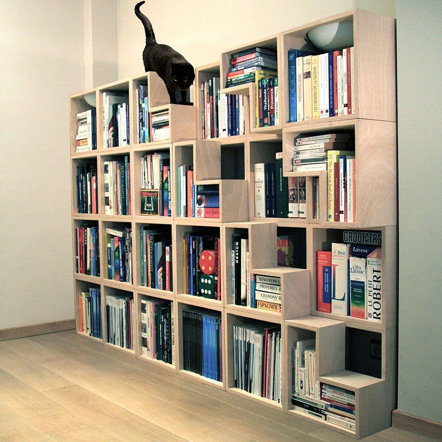 Librería para gatos intrépidos !!