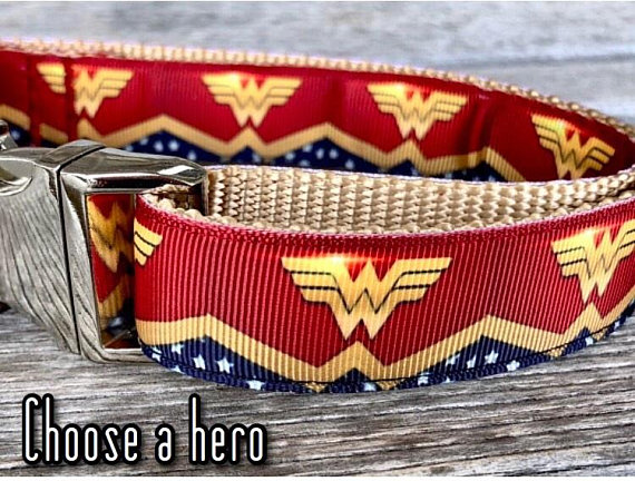Superhero 1 Wide Dog Collar Leash Or Step In Harness Wonder