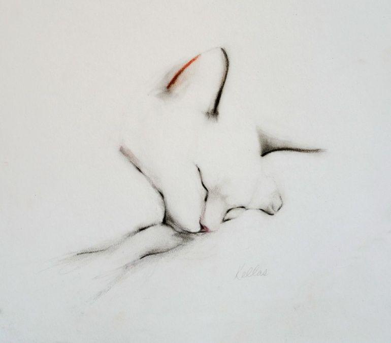 Sleeping Cat In September Tattoo Design Pinterest Dessin Chat