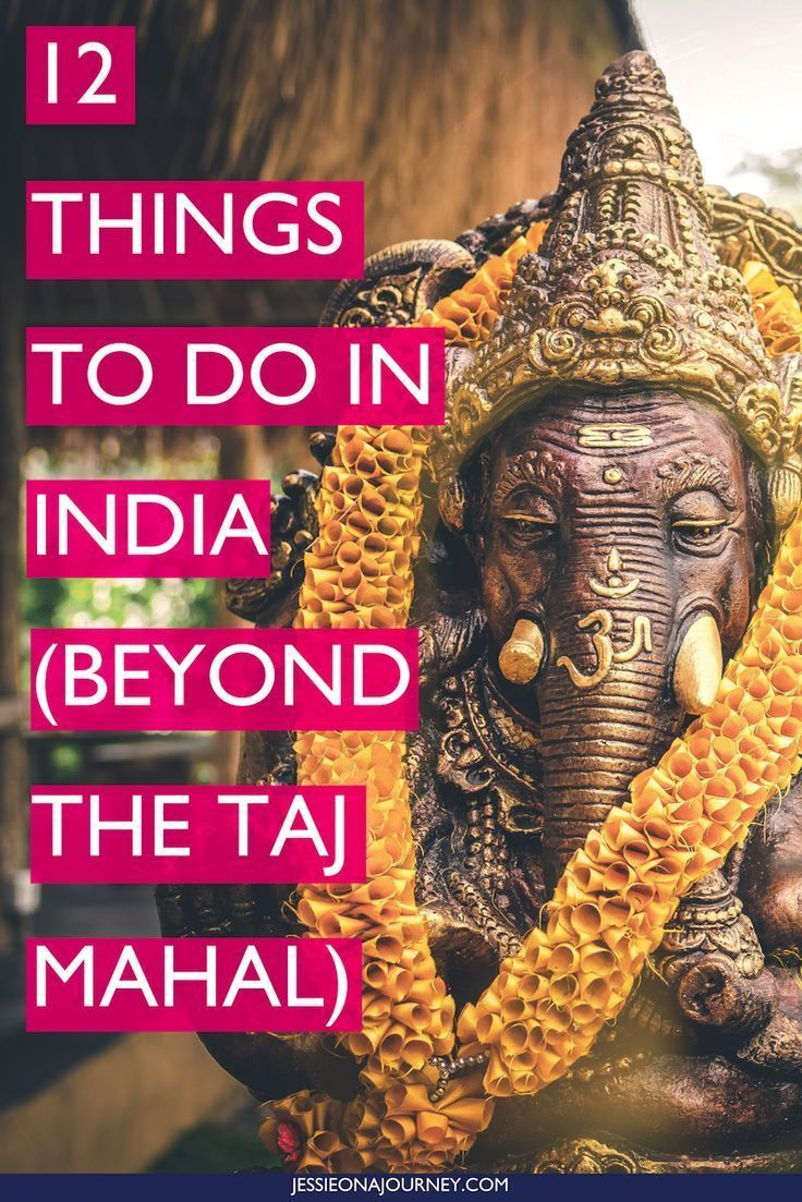 Here are 12 things to do in India -- specifically in the north -- beyond the Taj Mahal.  ___ #india #travelguide #indiatravel #thingstodoinindia #indiatrip #offbeattravel