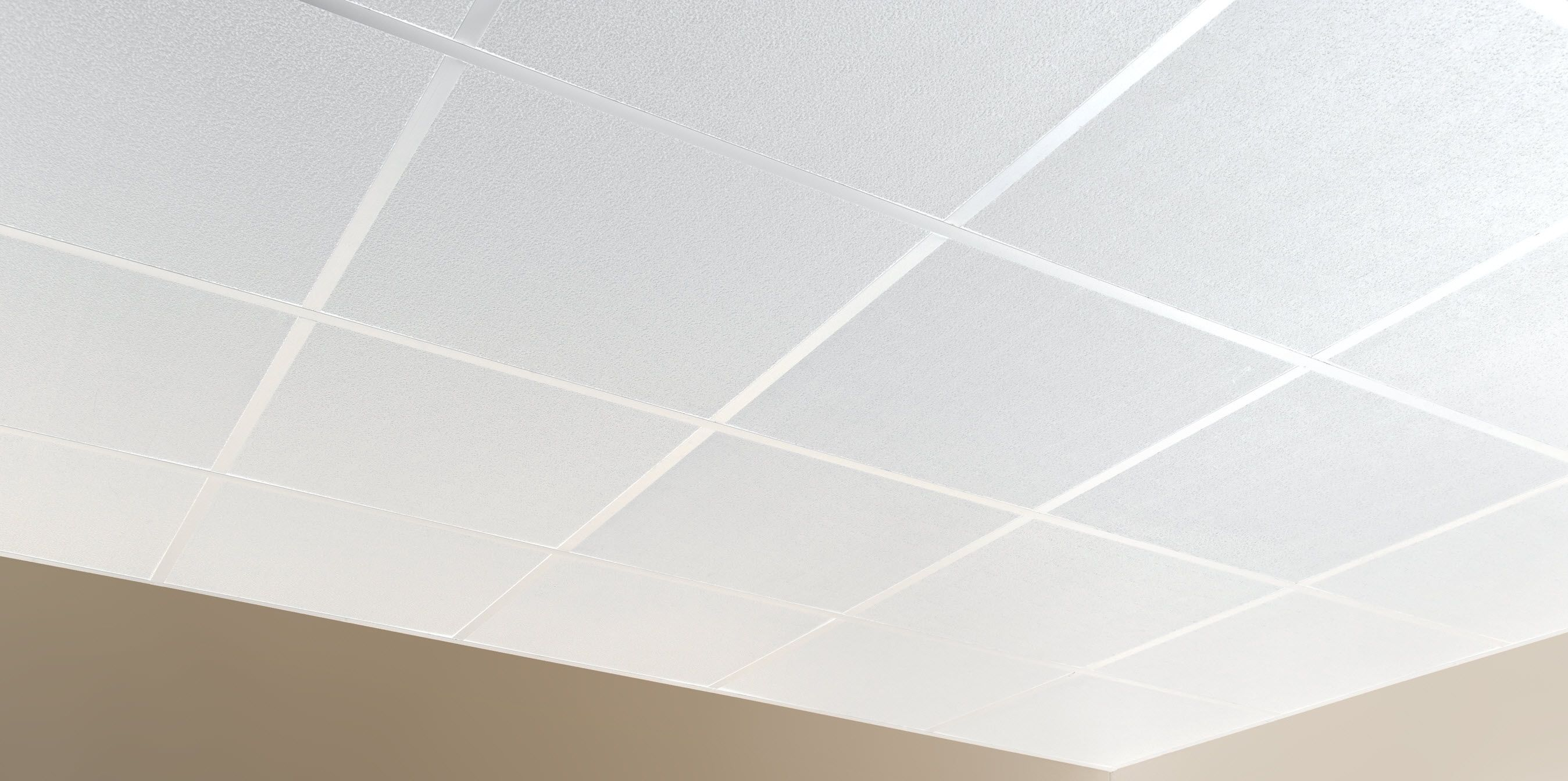 Waterproof Ceiling Tiles Suspended | http://creativechairsandtables ...