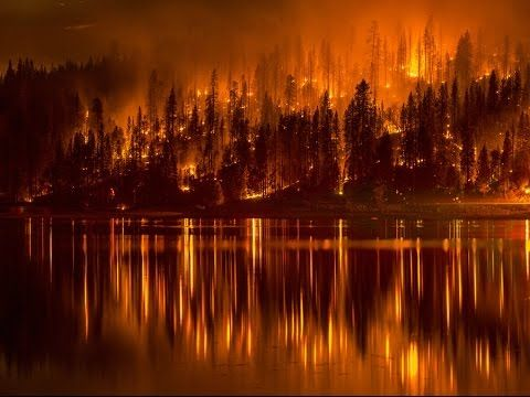 California Wildfire Calabasas Los Angeles County Wildland Fire Bass Lake Pictures Of The Week