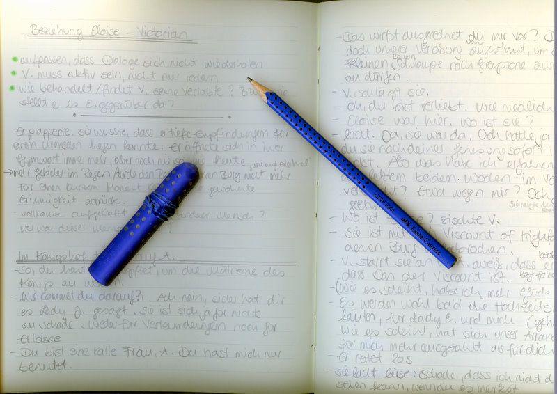 Mein Notizbuch für meine Ideen zum aktuellen Roman ist immer dabei ...