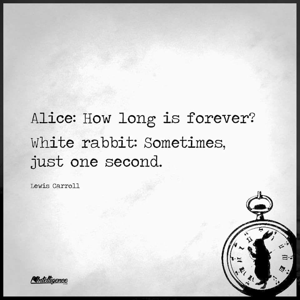 White Rabbit Bedeutung
