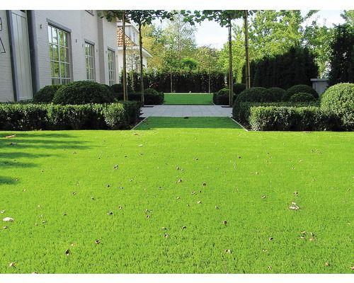 Kunstrasen Arizona Mit Drainage Grun 400 Cm Breit Meterware Bei Hornbach Kaufen Kunstrasen Garten Gartengestaltung Garten
