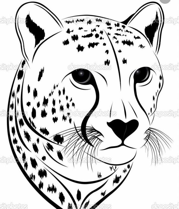 Pin By Amanda Z On Mammals Cat Face Drawing Cheetah Face Cheetah Print Tattoos