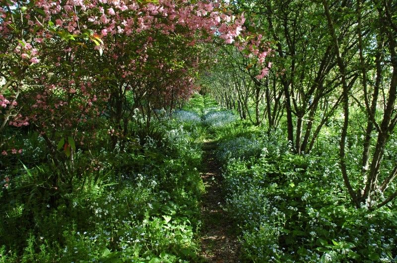 romsey garden | Rick Eckersley Garden Architecture ...