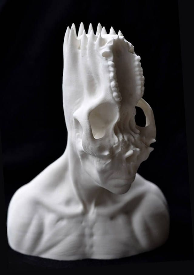 3D-Printed Skull Busts Break Down the Human Body | The Creators Project
