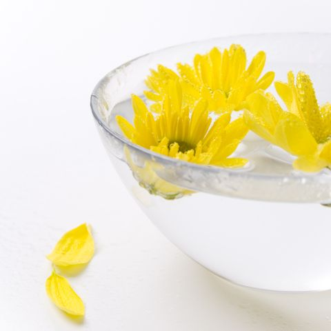 Making and Using Flower Essences |National Association for Holistic Aromatherapy