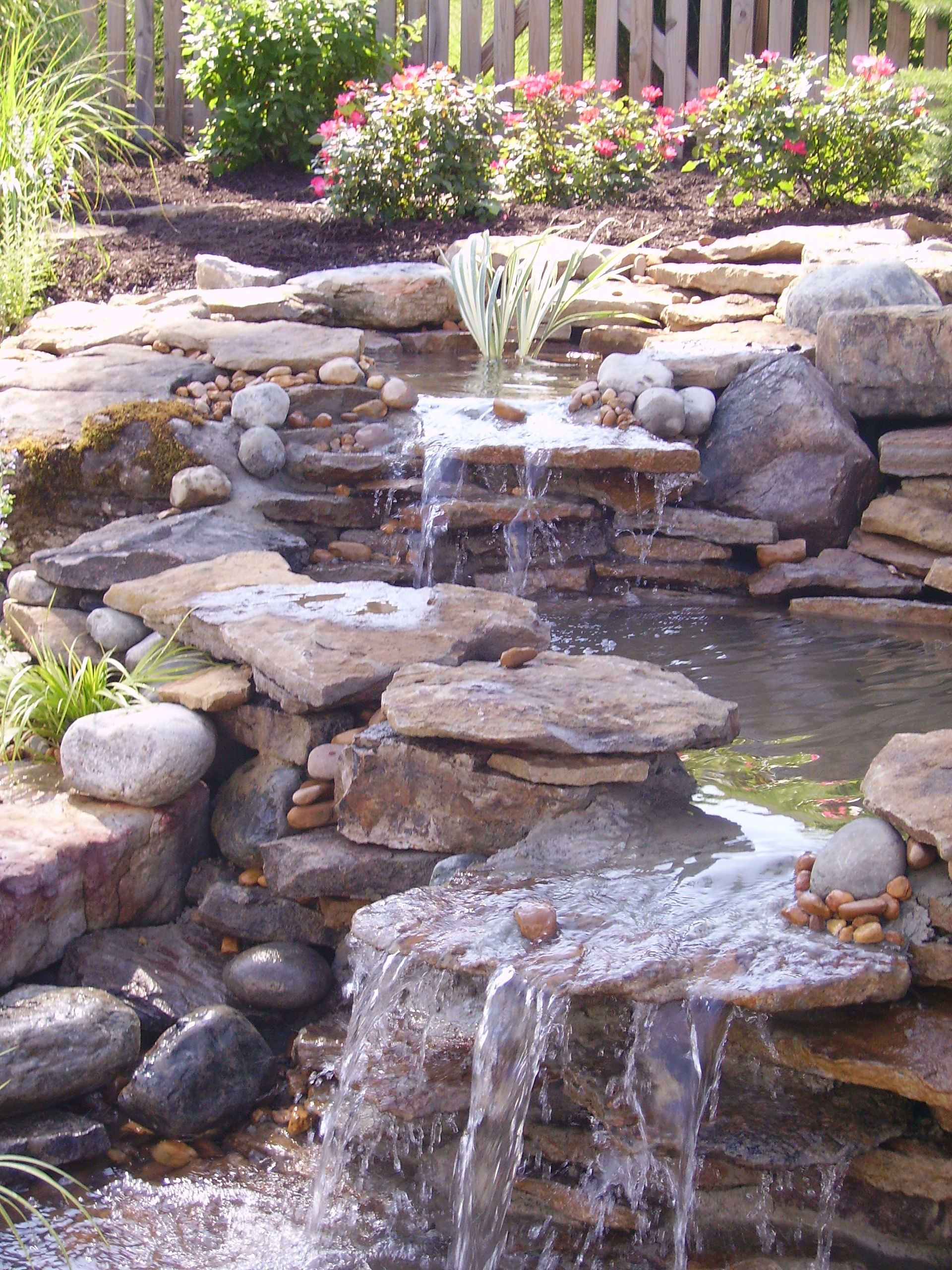 There are few better features than a pond and waterfall for Backyard waterfall pond