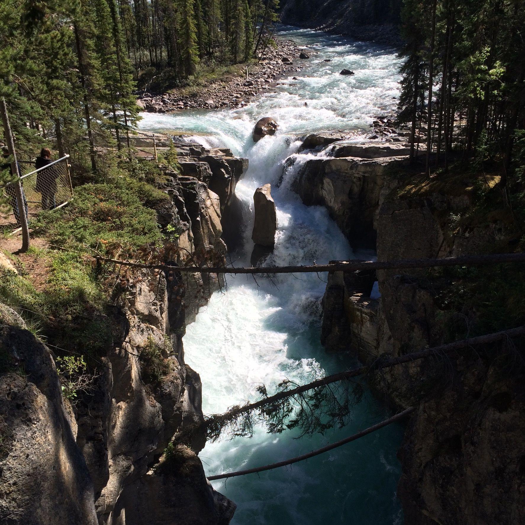 Kanada -Icefield Parkway-Athabaska  Falls