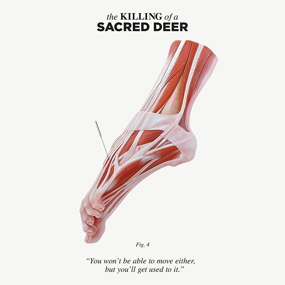 убийство священного оленя 2017 On Imdb Movies Tv Celebs And More Deer Poster Deer Sacred