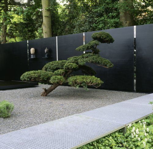 65 Philosophic Zen Garden Designs: Sculpted Pine And Creased Steel And Mirror Wall. Lord That