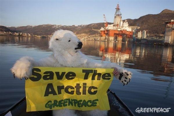 Jääkarhu ei halua öljynporaajia Arktikselle.