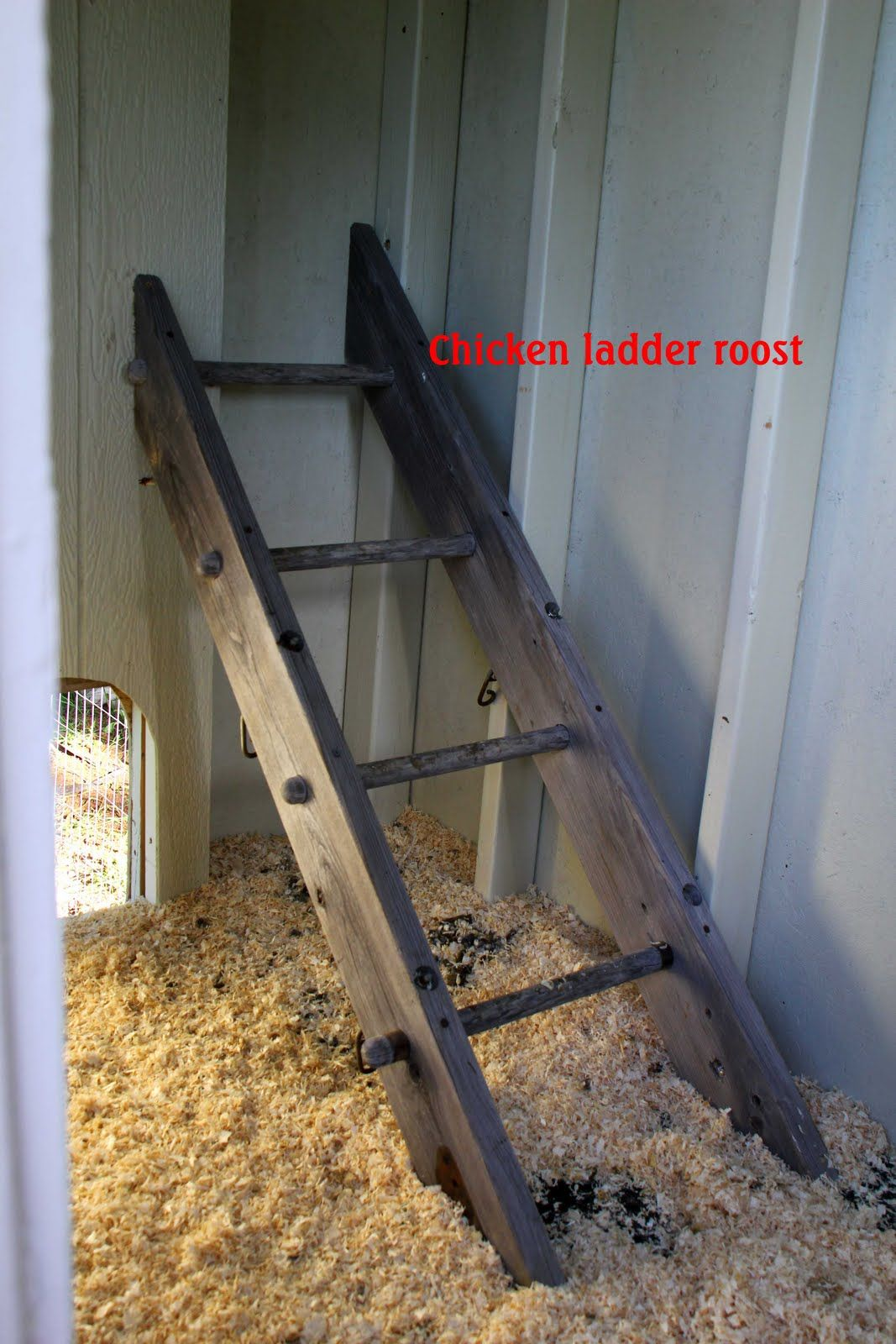 Chicken Roosting Bars Roost We Used Our Old Swingset Monkey