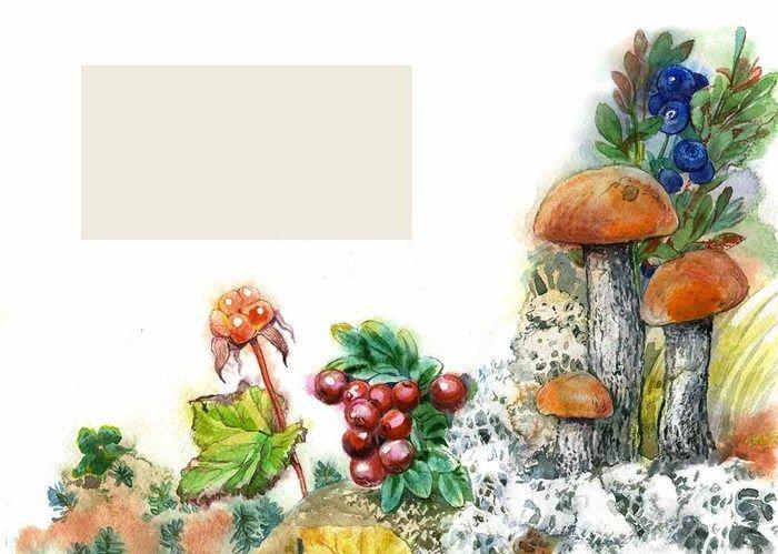 бок рисунок грибы и ягоды в лесу показывает выставка бремене