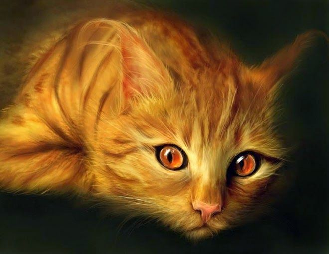 20 Beautiful Realistic Cat Drawings To Inspire You With Images