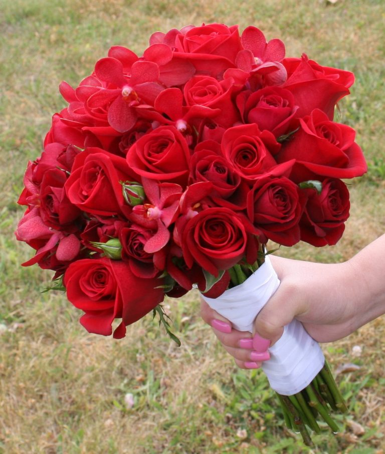 صور ورد جوري احمر 2020 Flowers Beautiful Flowers Red Rose Wedding