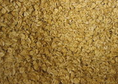 oats and the gluten free diet