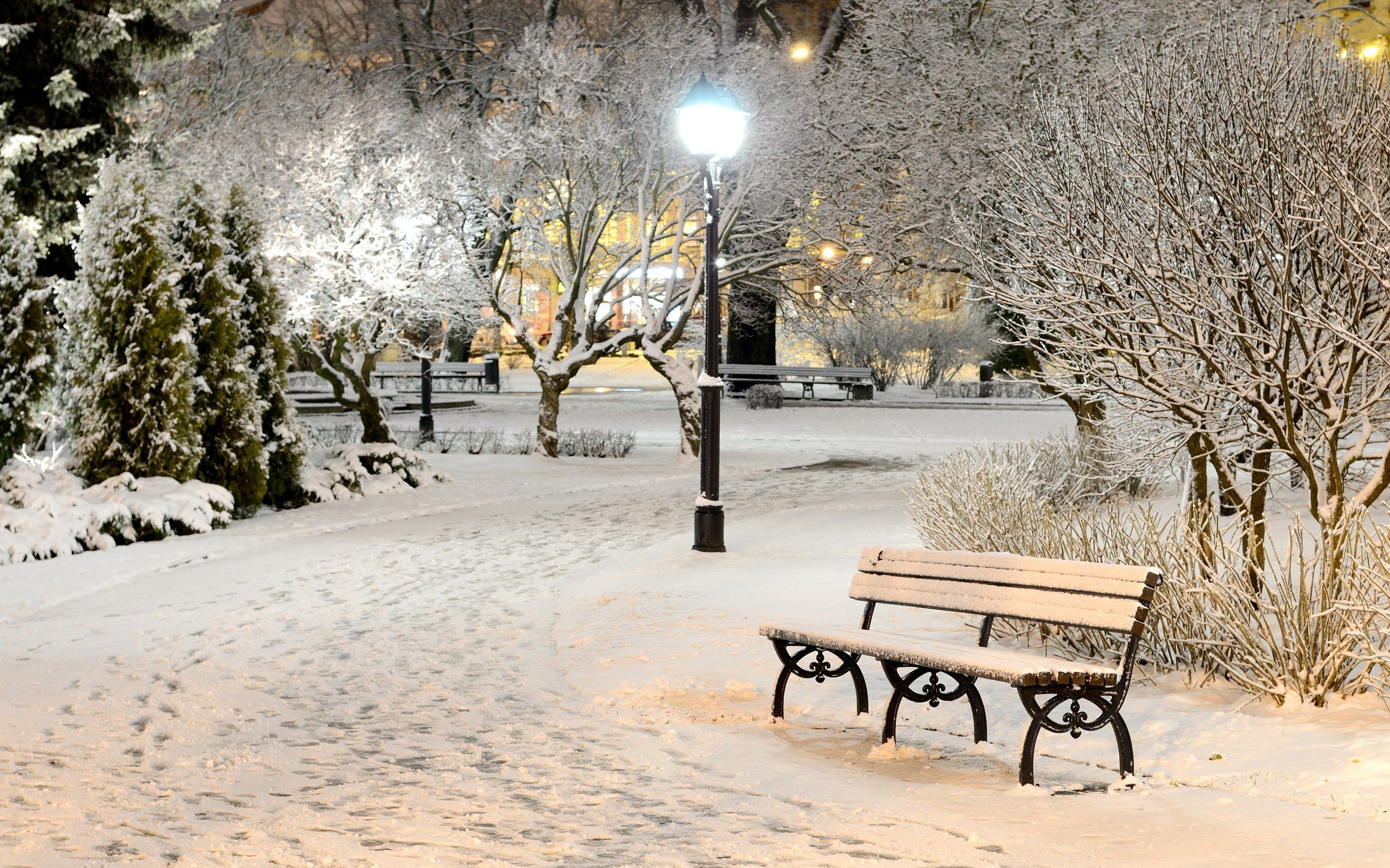 Snow Night Wallpapers Hd With High Resolution Wallpaper
