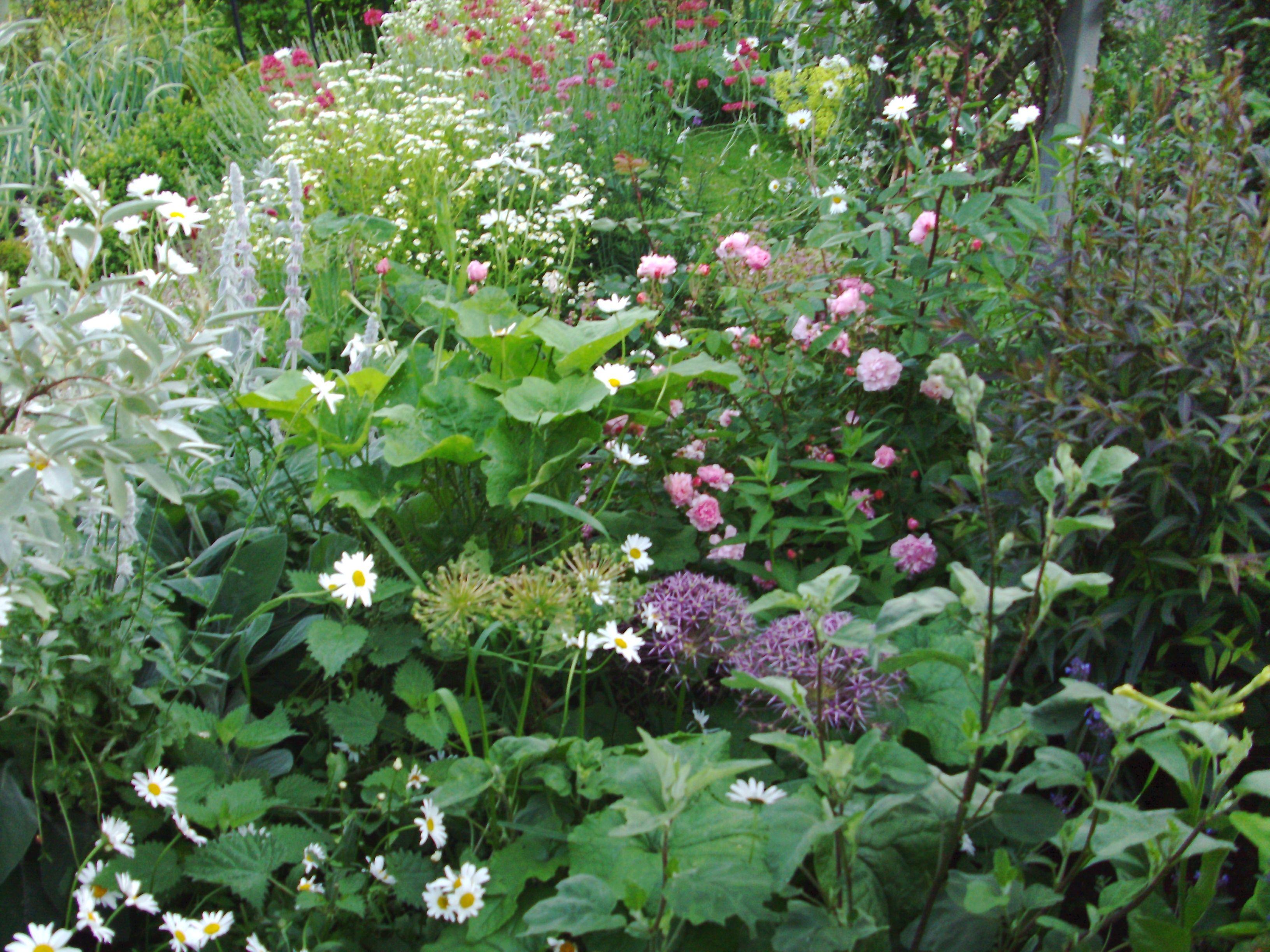 Just pretty | Jardins