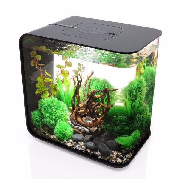Biorb flow 30 8 gallon freshwater acrylic aquarium kit for How to build an acrylic fish tank