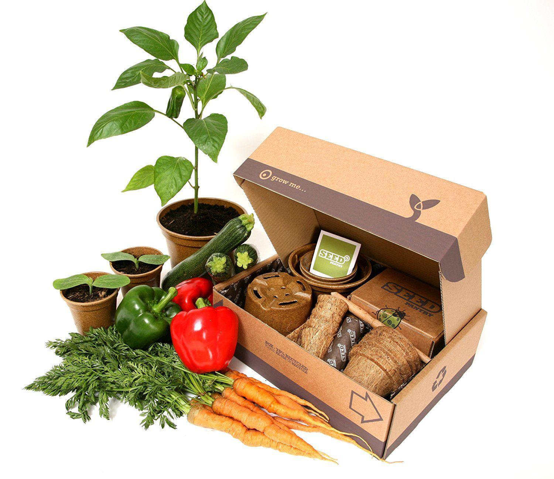 Seed Pantry Herb Seeds Starter Pack
