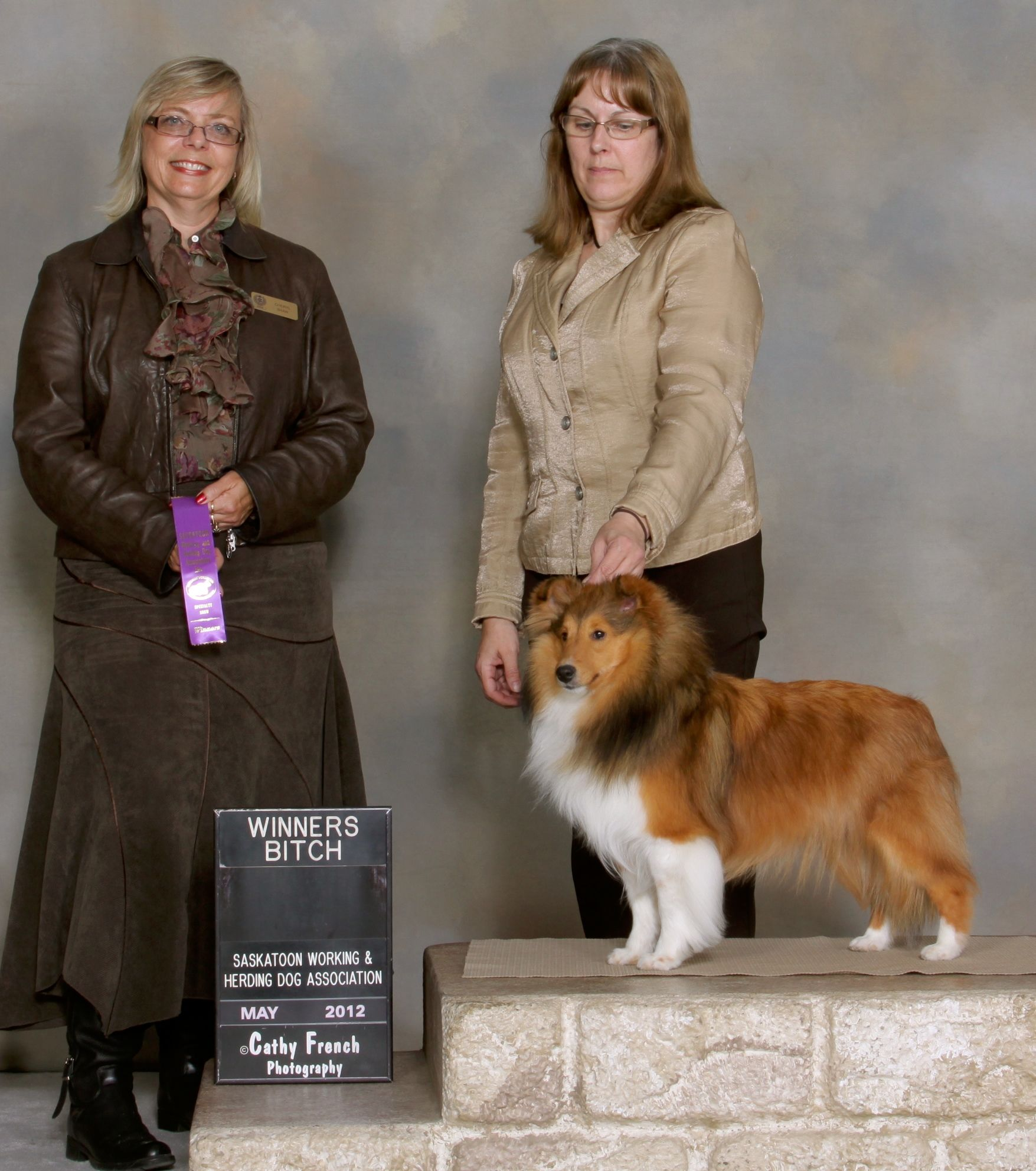 CanyonView Emi (With images) Shetland sheepdog, Sheepdog