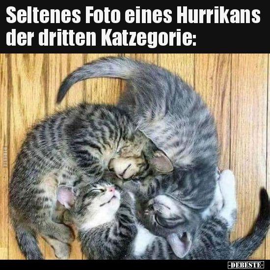 Seltenes Foto Eines Hurrikans Der Dritten Katzegorie Lustige