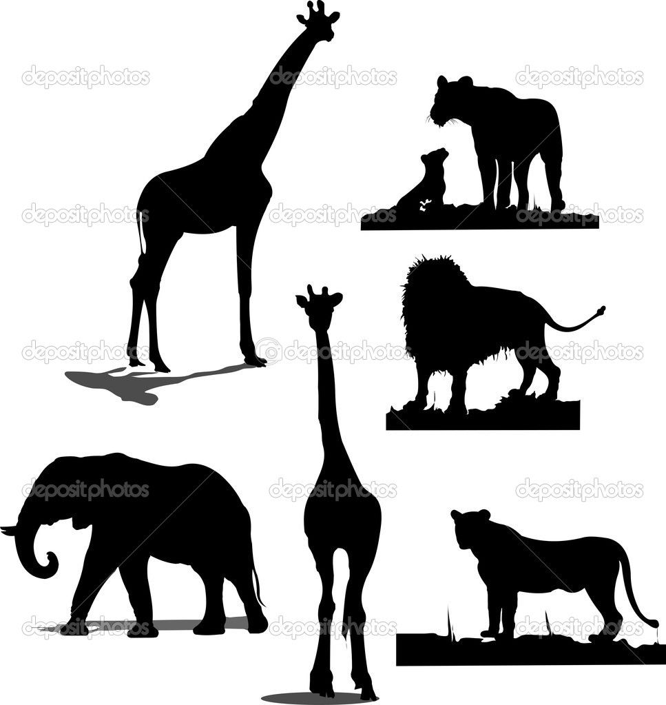 African Animal Silhouettes Black And Wh Tier Silhouette Afrikanische Tiere Afrika Tiere