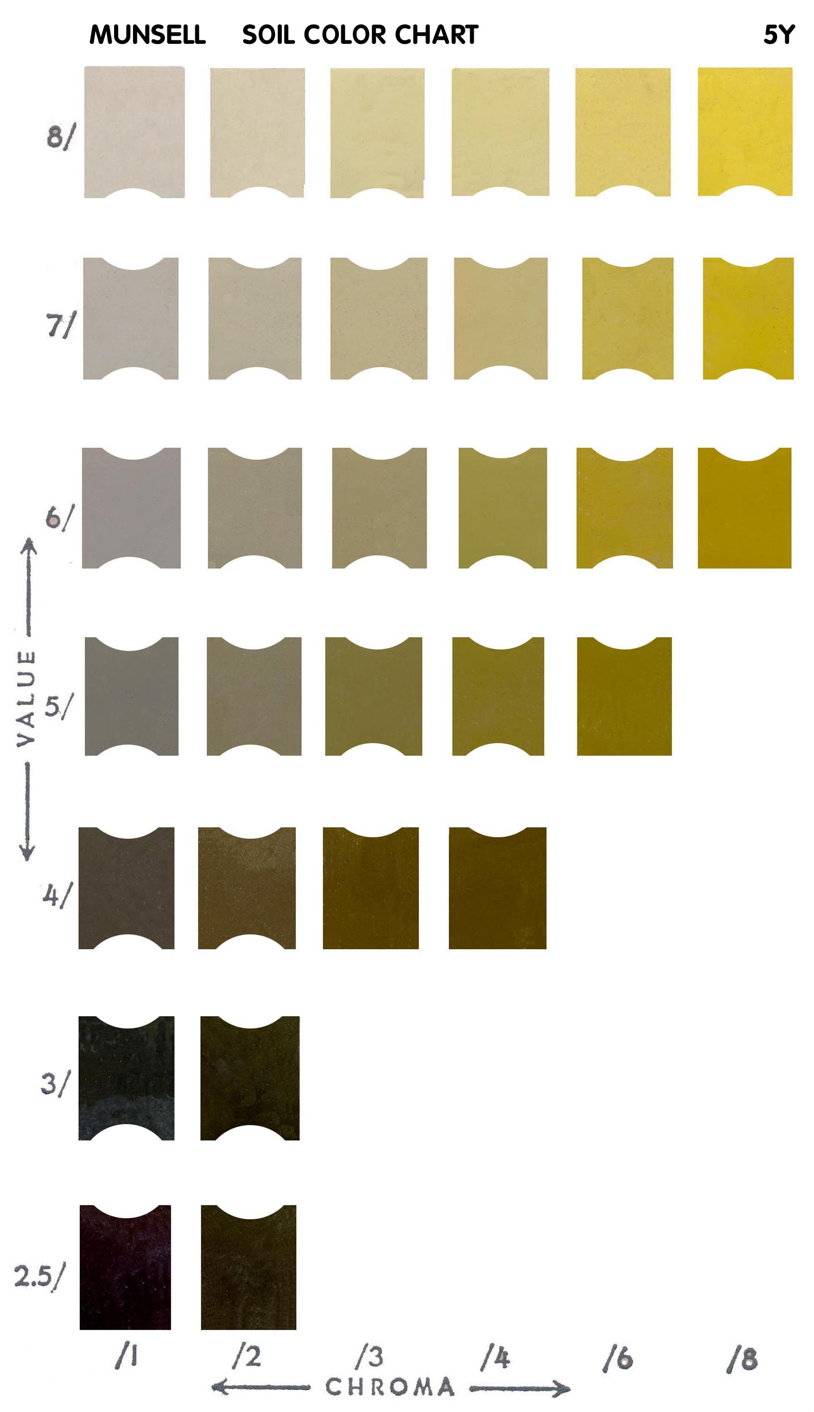 Munsell color chart online free  ng thang mau also munsel rh pinterest