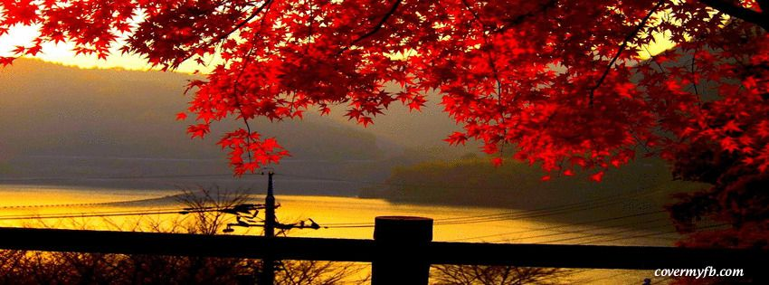 Free Fall Facebook Covers: Autumn River ~ Facebook Cover
