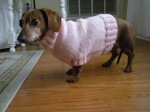 Simple Sweater Pattern for Mini Dachshund, Doxie, Dachshund, Knitted Dog Swea...