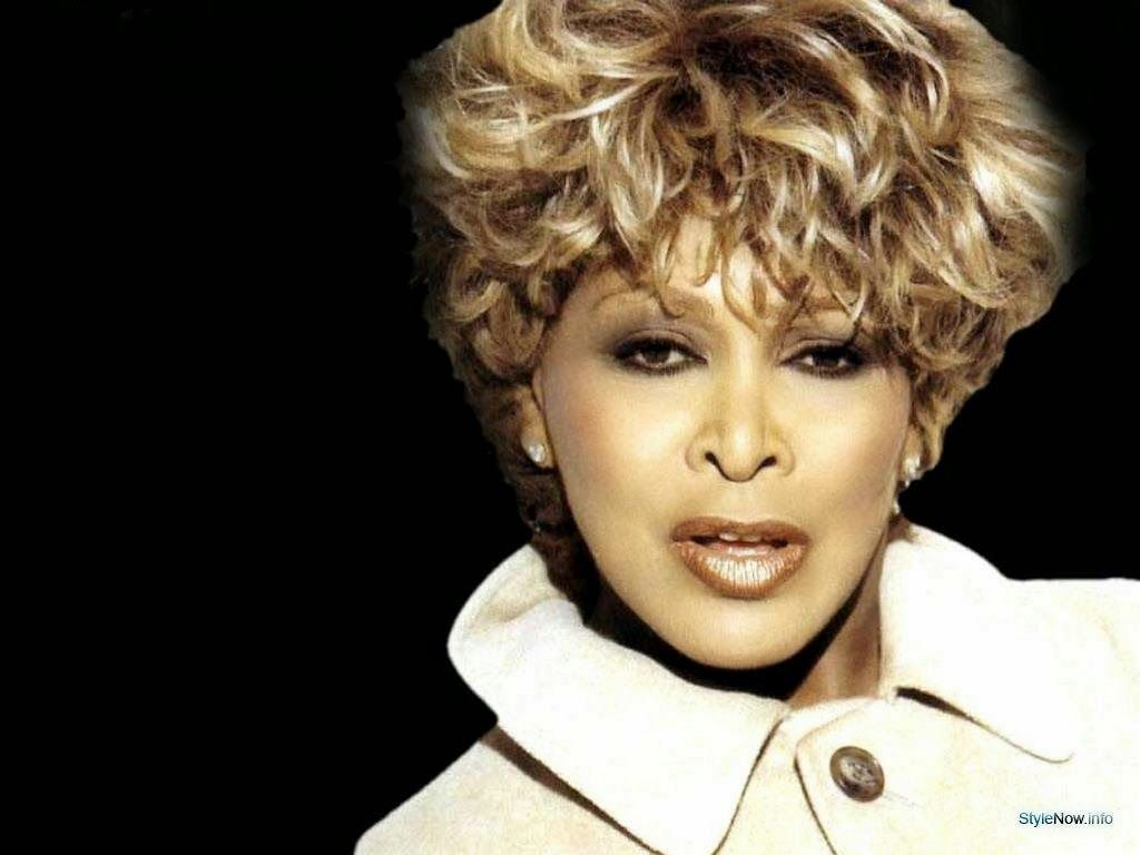 tina turner hair styles tina turner hairstyle search hair 6280